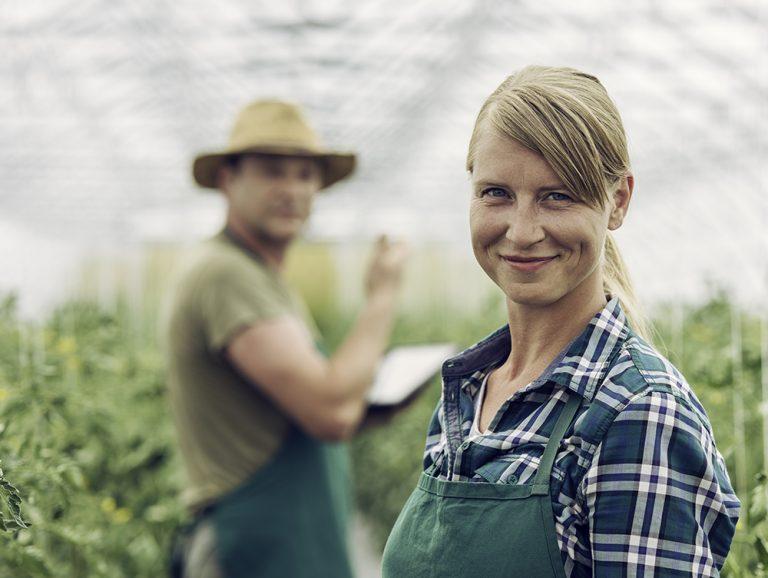 Agri Consultancy