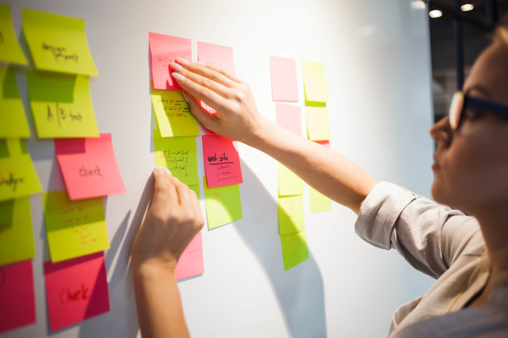 The Role of the Program Manager